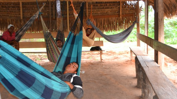 Brazil's Psychedelic Rehab Center Treats Drug Addicts With Ayahuasca