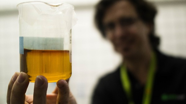 The Making of the Most Potent Weed Oil on the Market