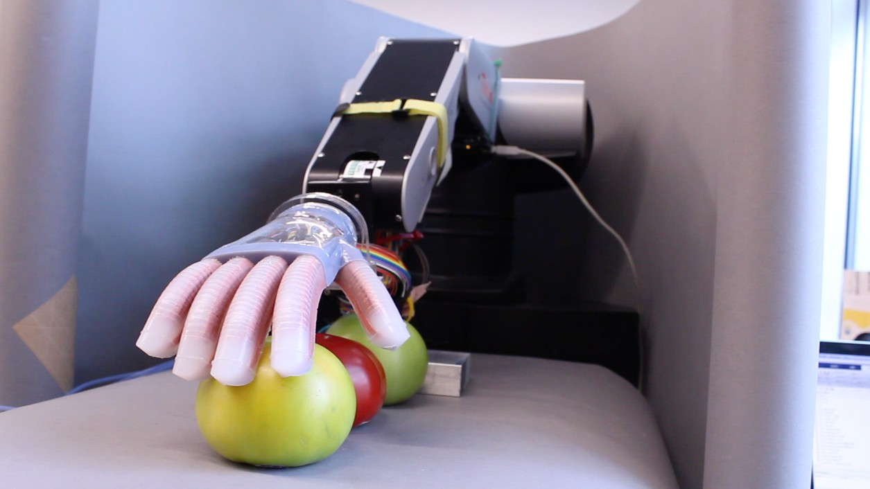 Watch This Very Gentle Robot Pick Out A Ripe Tomato