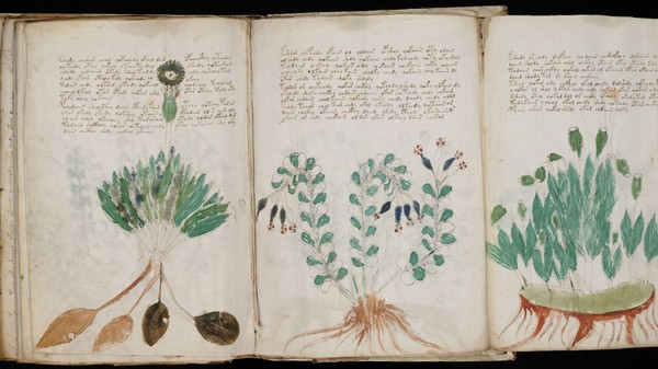 Finally, a Use for Big Data: Cracking the Voynich Manuscript