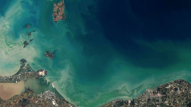 The Mystery of Lake Erie's Toxic Algae Deepens