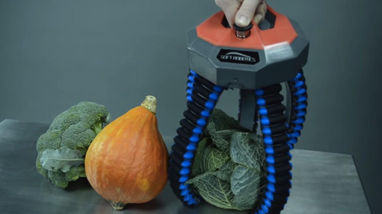 Aanschouw hoe een flexibele, rubberachtige robothand wat dingen oppakt
