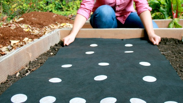 Use an Algorithm to Print Out Your Next Garden