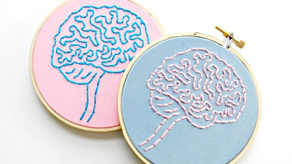How 'Neurosexism' Feeds Stereotypes About Male and Female Brains