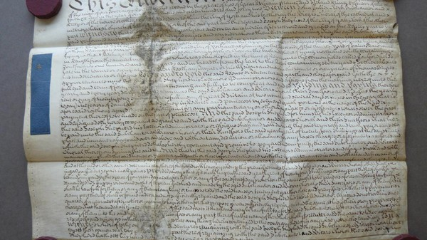 Scientists Extracted Sheep DNA from 400-Year-Old Parchment