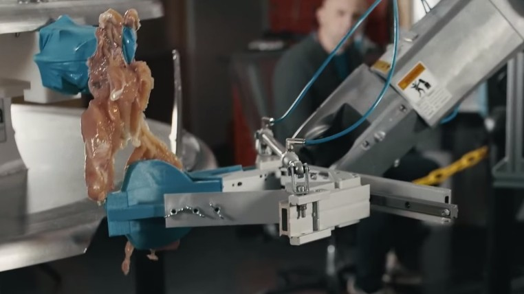 This Is the Robotic Chicken Butcher of Our Nightmares