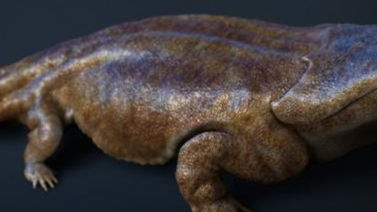 The Giant Amphibian that May Have Feasted on Dinosaurs