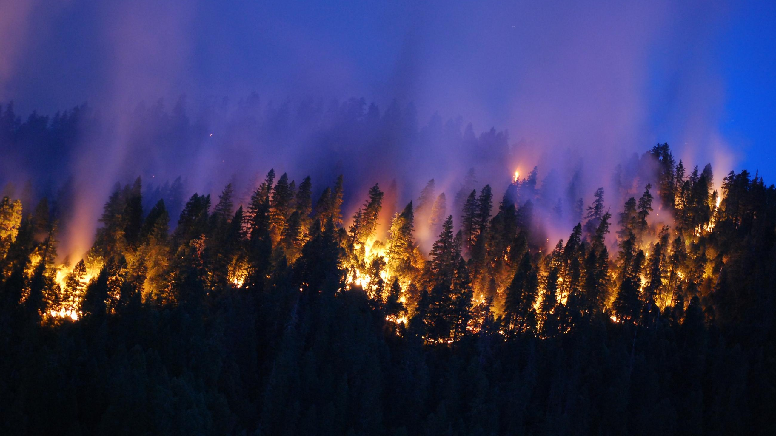 Will El Niño Save the Western US from Wildfire Hell?