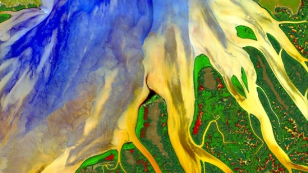 This Is How Satellites Will Pinpoint Earth's Most Vulnerable Ecosystems