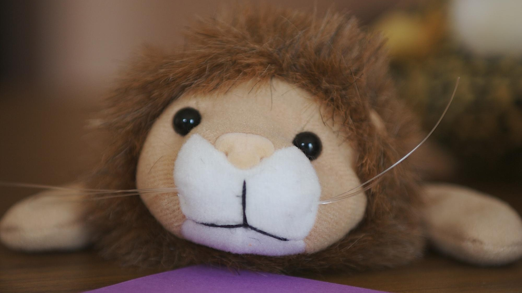 People Are Trying to Trademark 'Cecil the Lion' for Profit