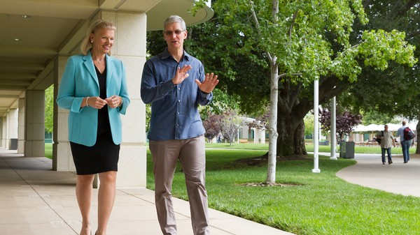 PC Inventor IBM to Babysit Macs for Businesses