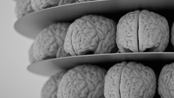 Researchers Are Getting Closer to 3D Printing Brains