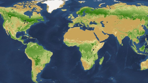 It Turns Out Earth Has Seven Times as Many Trees as Previously Thought