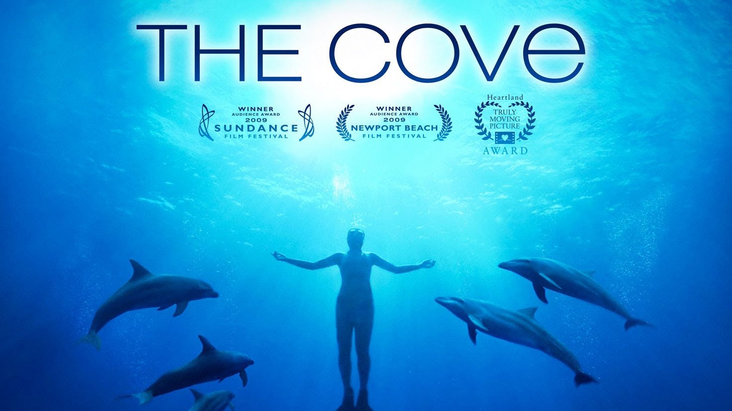 Six Years Later: Did 'The Cove' Impact Dolphin Hunting in Japan?