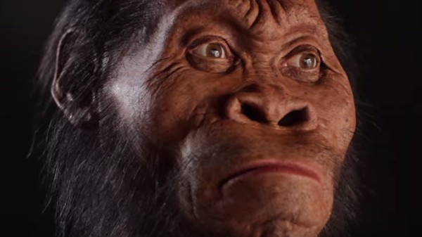 Here's How You Reconstruct a 1.9-Million-Year-Old Face