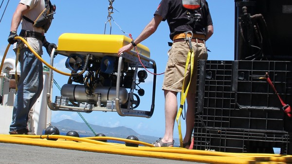 Two Undersea Robots are Saving Marine Life From Lost and Abandoned Fishing Nets