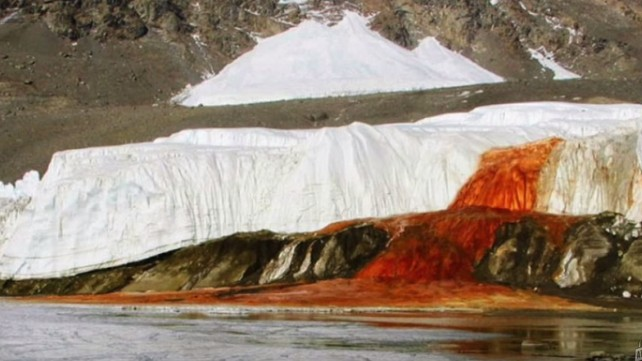 Antarctica's Weird and Wondrous Blood Falls Houses Tons of Ancient Microbes