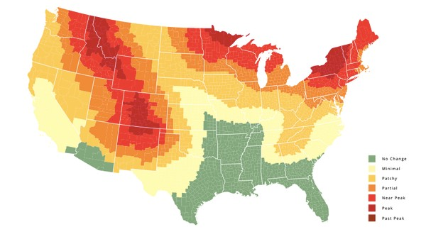 This Fall Foliage Map Shows You When to Expect Peak Autumn Gorgeousness