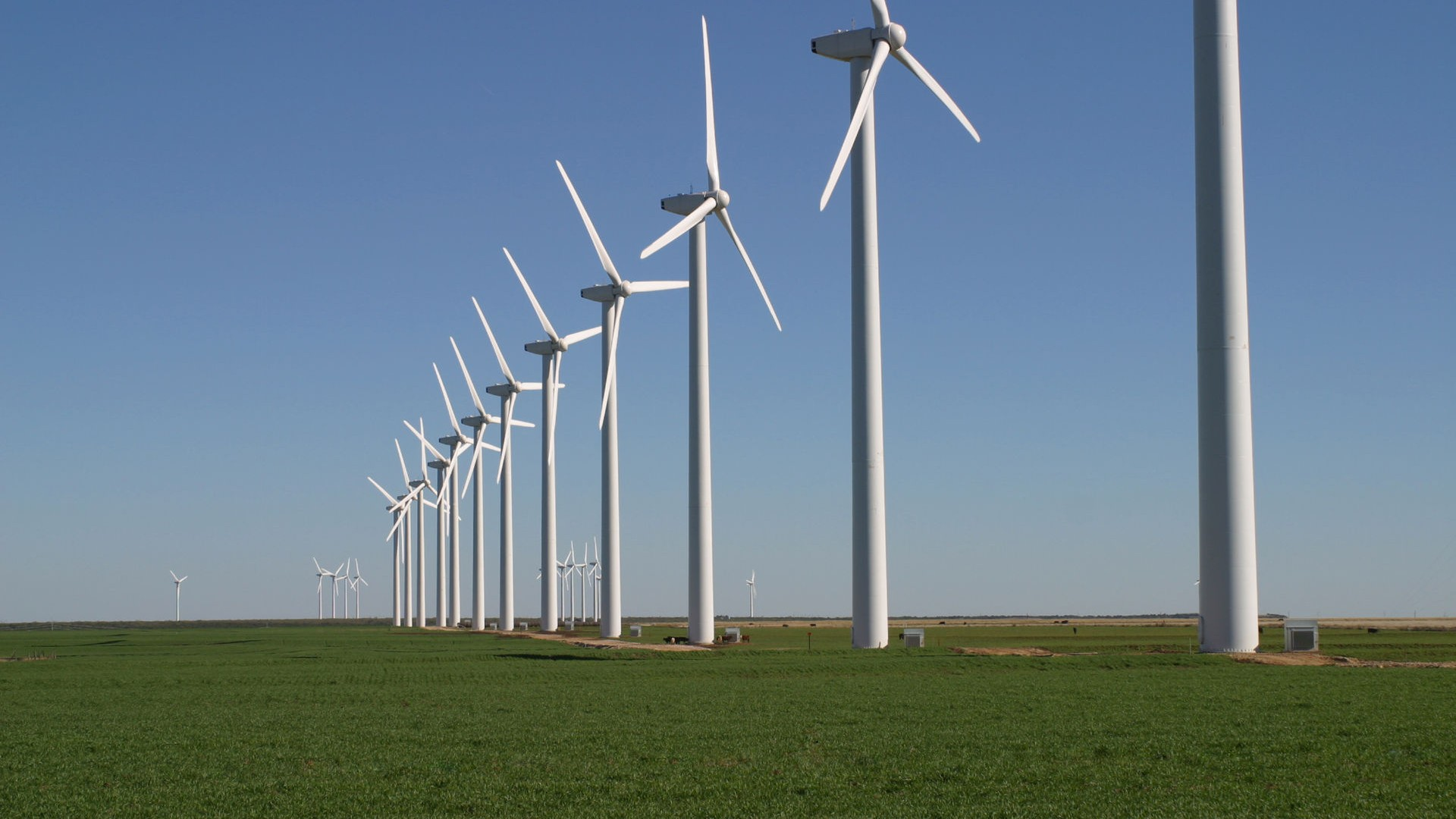 Virtual Fences Around Wind Farms Could Reduce Bird Deaths