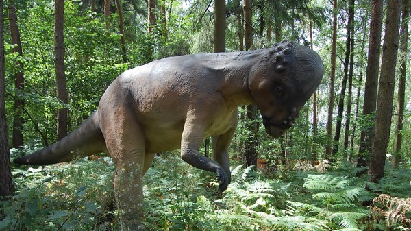 ​Dinosaurs' Noses Kept Their Brains from Melting, Study Finds