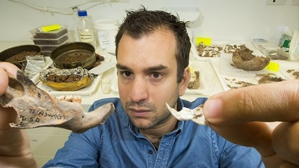 40,000 Years Ago, Our Ancestors Were Eating Rats the Size of Small Dogs