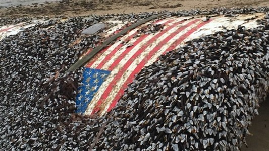 A SpaceX Rocket Washed Up in England After 14 Months at Sea