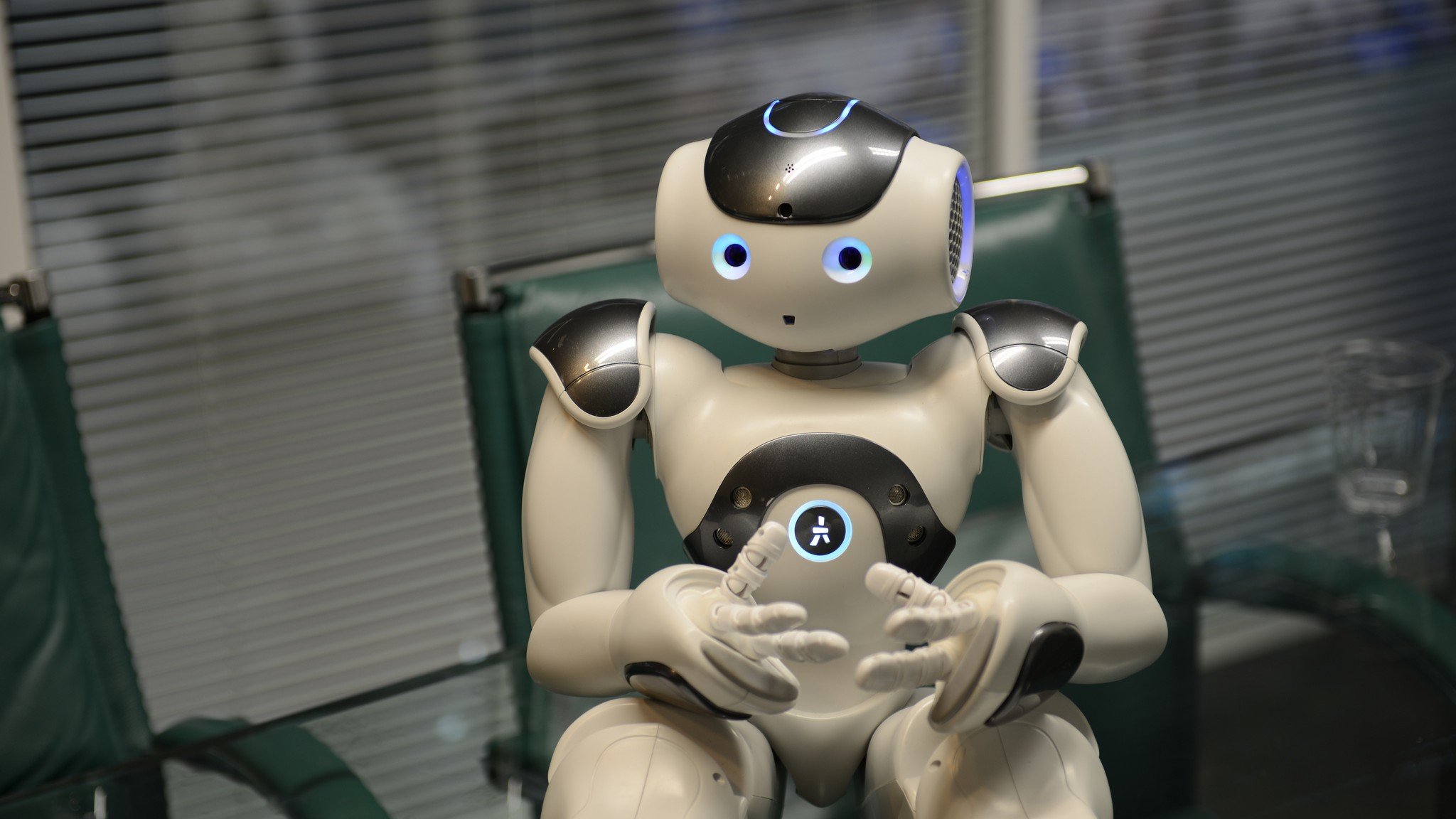 Why Are Humans Afraid to Touch Robot Butts?