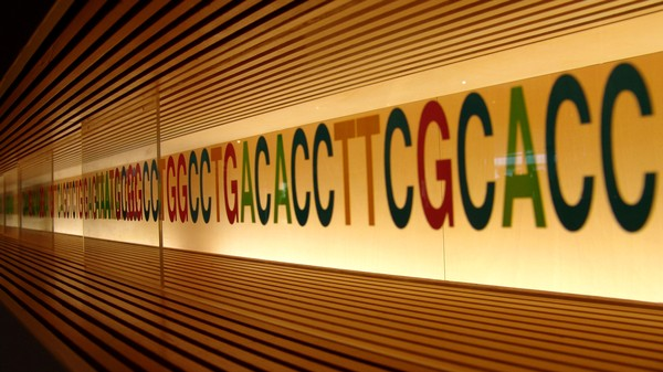 Canada's Insurance Companies Want All Your Genetic Information
