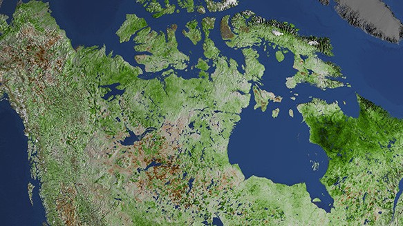 Canada's Rapidly 'Greening' North is Bad News For Everyone