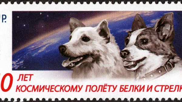 The Brave Bitches Who First Orbited Earth and Lived to Bark About It