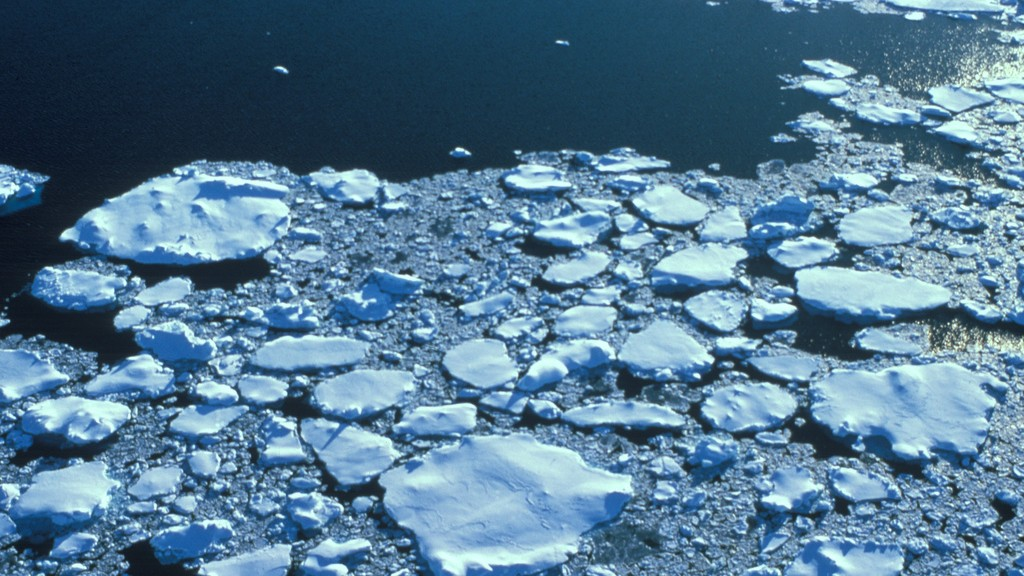 The Earth's Poles Have Lost Enough Ice to Cover Texas Four Times