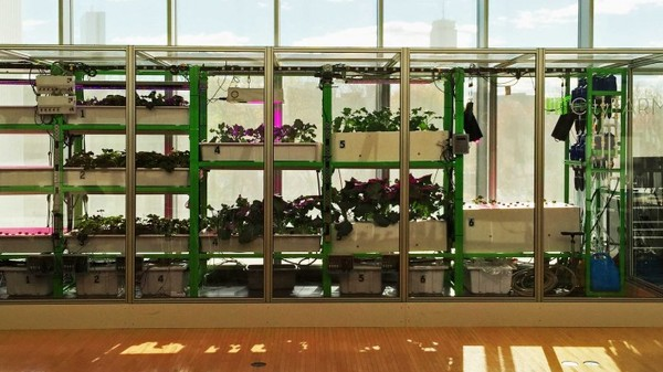 MIT Wants to Turn Everyone Into a Farmer With Its Food Computers