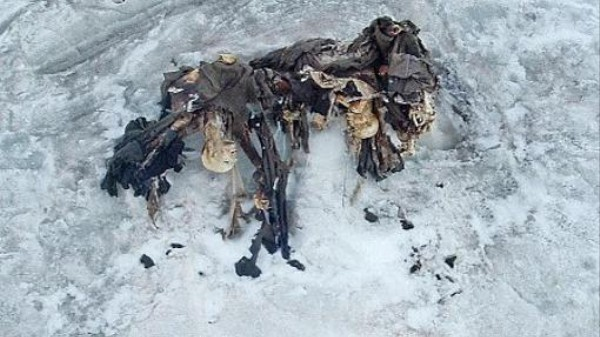 Smeltende gletsjer in Noord-Italië onthult lijken van WOI soldaten