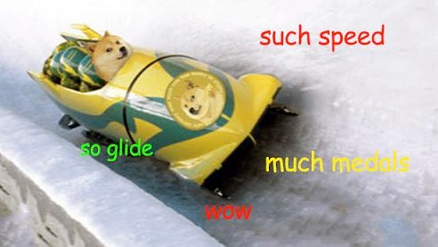 The Dogecoin Community Raised $30,000 for the Jamaican Bobsled Team