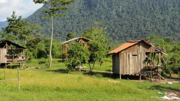 Drug Trafficking Is Destroying Central America's Rainforest