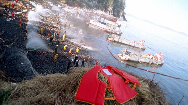 Exxon Valdez Oil Is Still Polluting the Prince William Sound 25 Years Later
