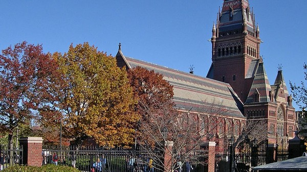Harvard Faculty Members Call on the University to Divest from Fossil Fuels