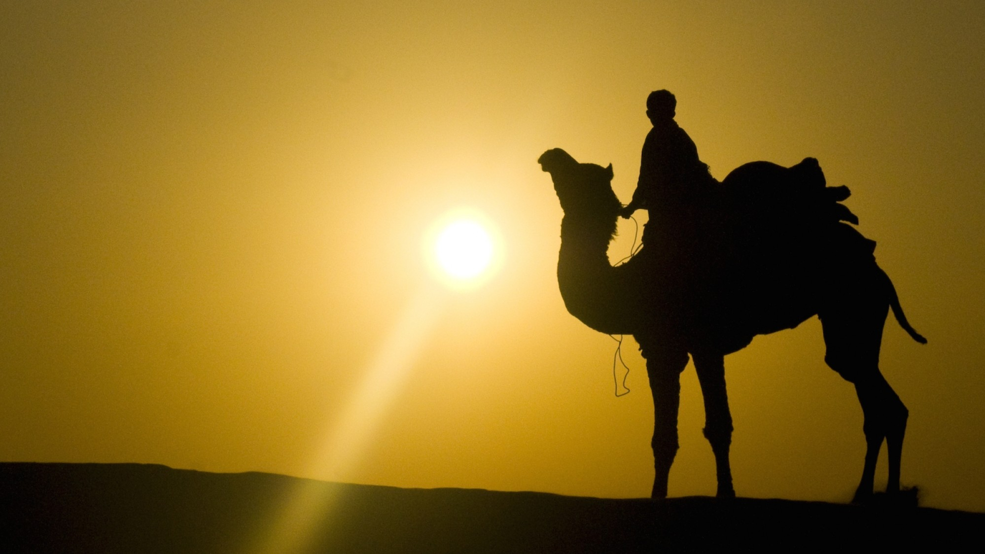How Silk Road Bounced Back from Its Multimillion-Dollar Hack