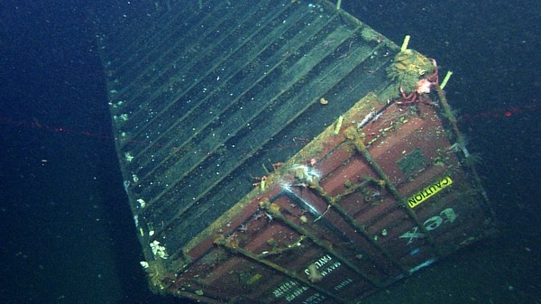 What Seven Years at the Bottom of the Sea Does to a Shipping Container