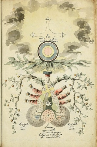 These Surreal Ancient Alchemy Manuscripts Are Terrifyingly Cool
