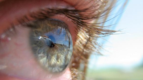 This Is the Year Of the Bionic Eye