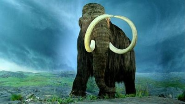 Is It a Good Idea to Revive Extinct Species, Jurassic Park-Style?