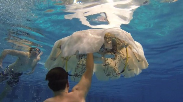 Why Does the Navy Need a Giant Robotic Jellyfish?