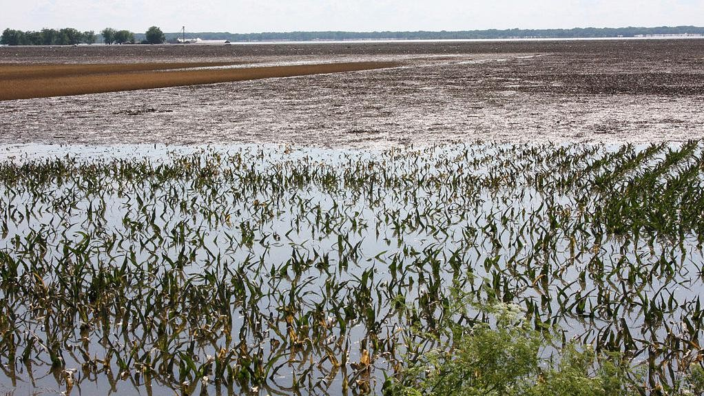 Agricultural Overuse Is Earth's Hidden Water Crisis, But Help May Be Coming