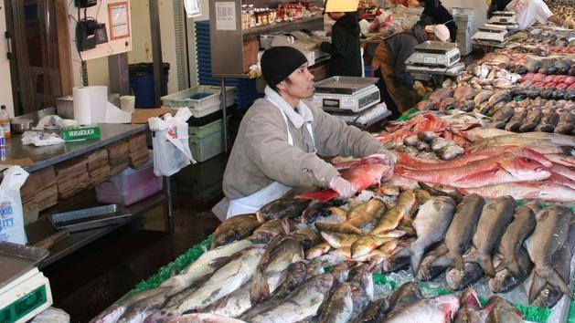 Who Wants to Fish in Fukushima?