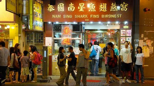 China's Shark Fin Decline Is a Model for Slowing the Wildlife Trade
